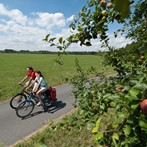 Offerta Vacanze in Bicicletta In Costa degli Etruschi Aprile e  MAGGIO