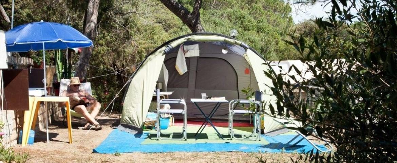 Lodge Tent DOG friendly